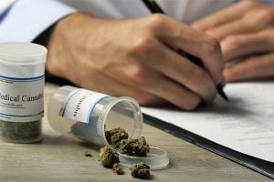 Read more about the article States with medical marijuana see decline in workers' compensation claims